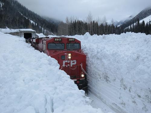 Trem na neve é possível?